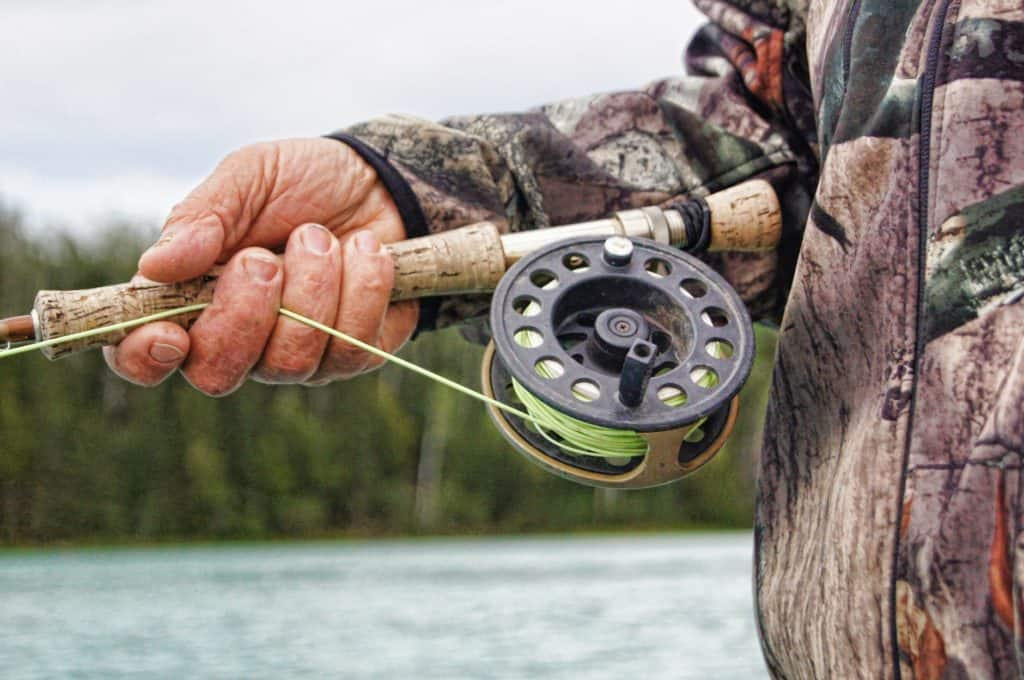 Fishing 101: A Beginner's Guide to Fishing Reels