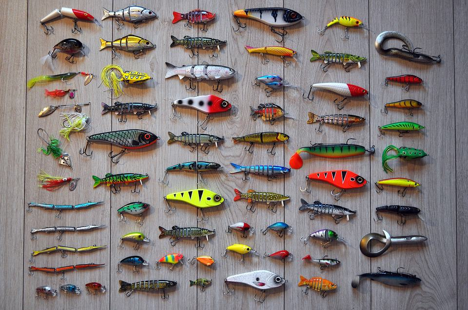 Fishing Bait 101: Synthetic Lure & Natural Bait