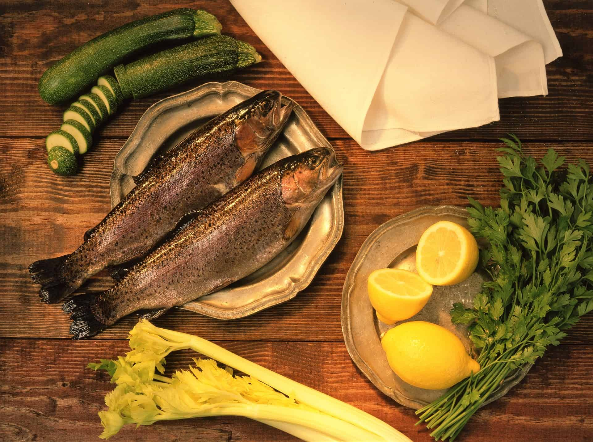 Most Interesting Facts About Trout Fish