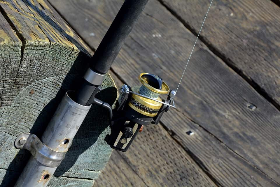 Fishing Reels: Most Common Types
