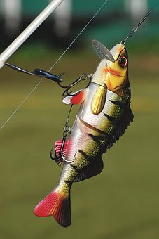 DIY Spoon Lure For Any Fish