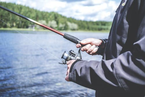 Catch Bullheads: Some Of The Tips To Follow To Get  Your Holds