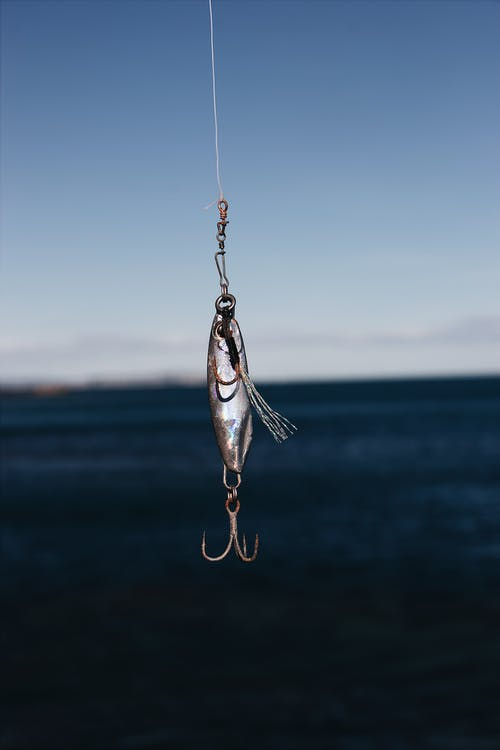 The Essential_Guide to Catching Finding and Keeping Freshwater Live Bait