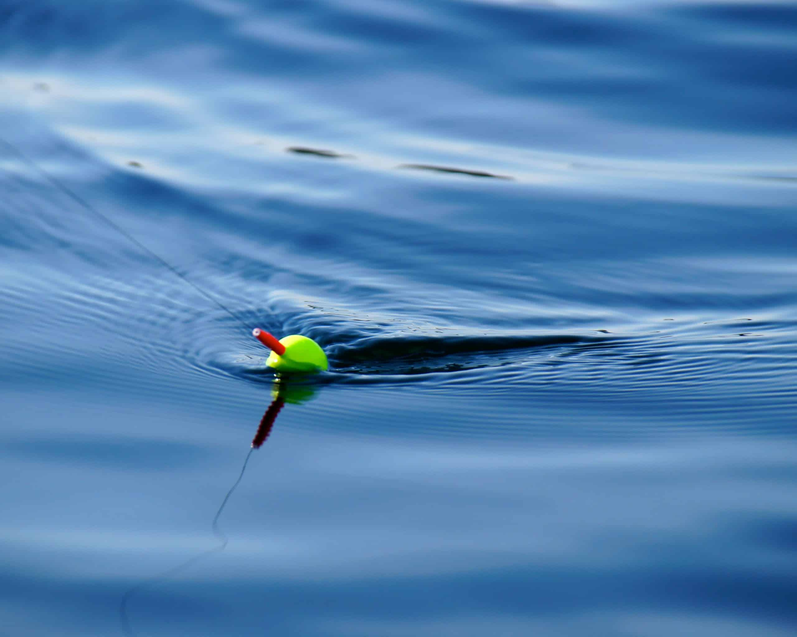 Tips To Catch More Fish - Catch More Fish With These Tricks