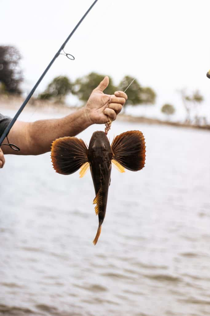 Catch Fish In Sea Easily With Different Equipment