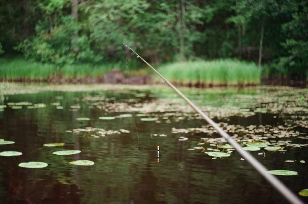 A Few Fishing Tips - How To Catch A Fish In A Right Way