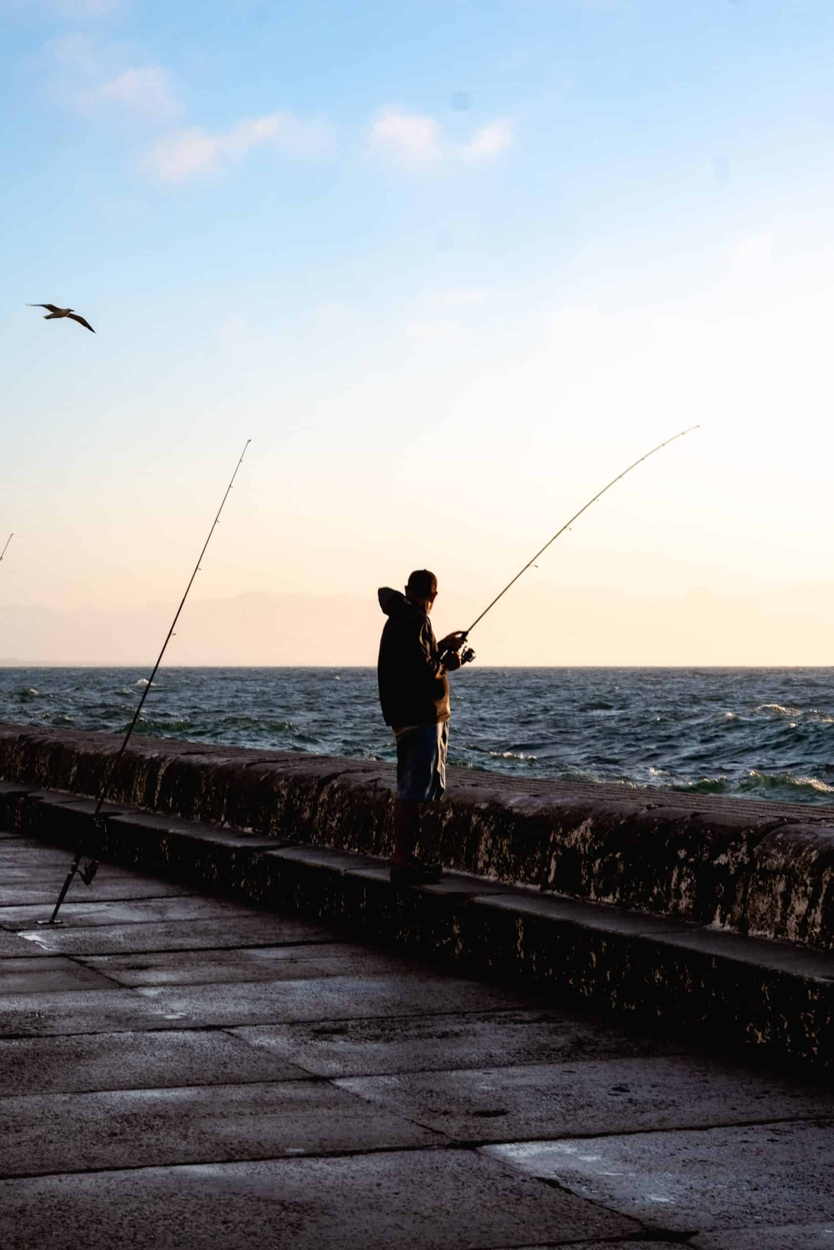 Tips And Guide About Traditional Fishing